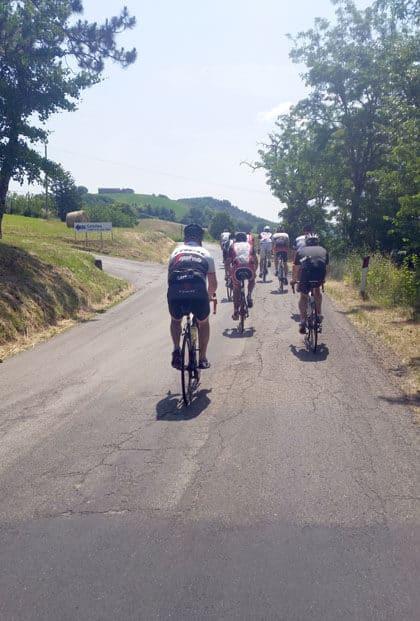 Rennradgruppe von hinten