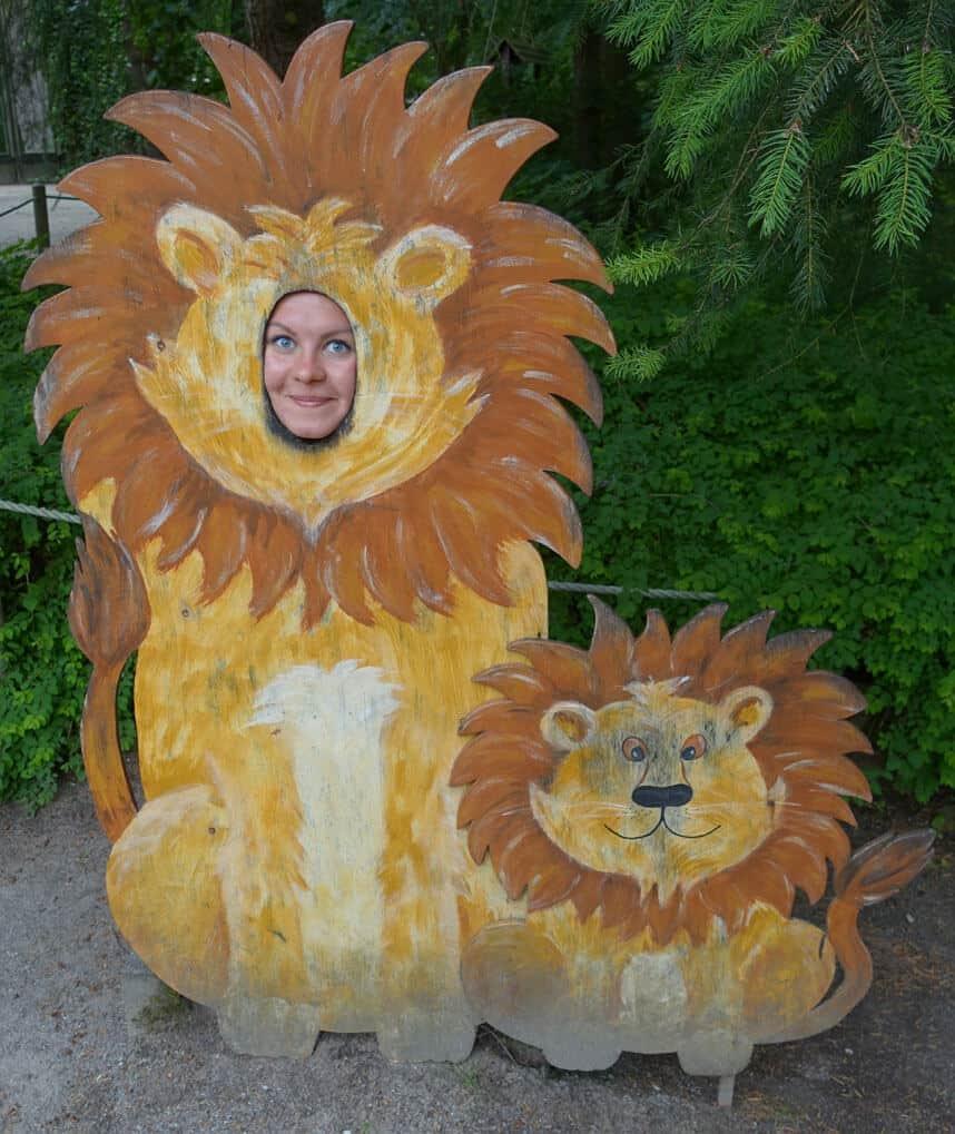 Zwei Löwen